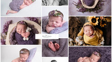 7 day mini newborn session