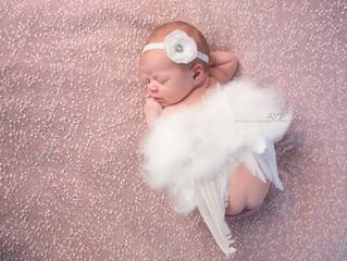 Gabriella 11 Days~Williamsport newborn photographer