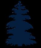 bluetree copy.png