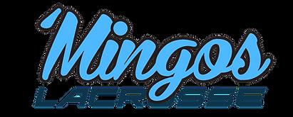 MINGO3_edited.png