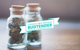 BUD TENDER QUESTIONS?