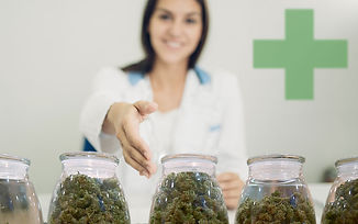 Budtender-Training-and-Education.jpg