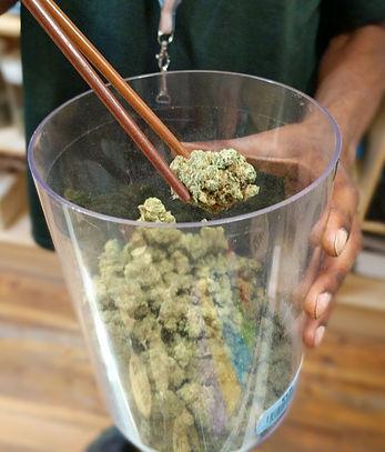 Cannabis_Dispensary.jpg