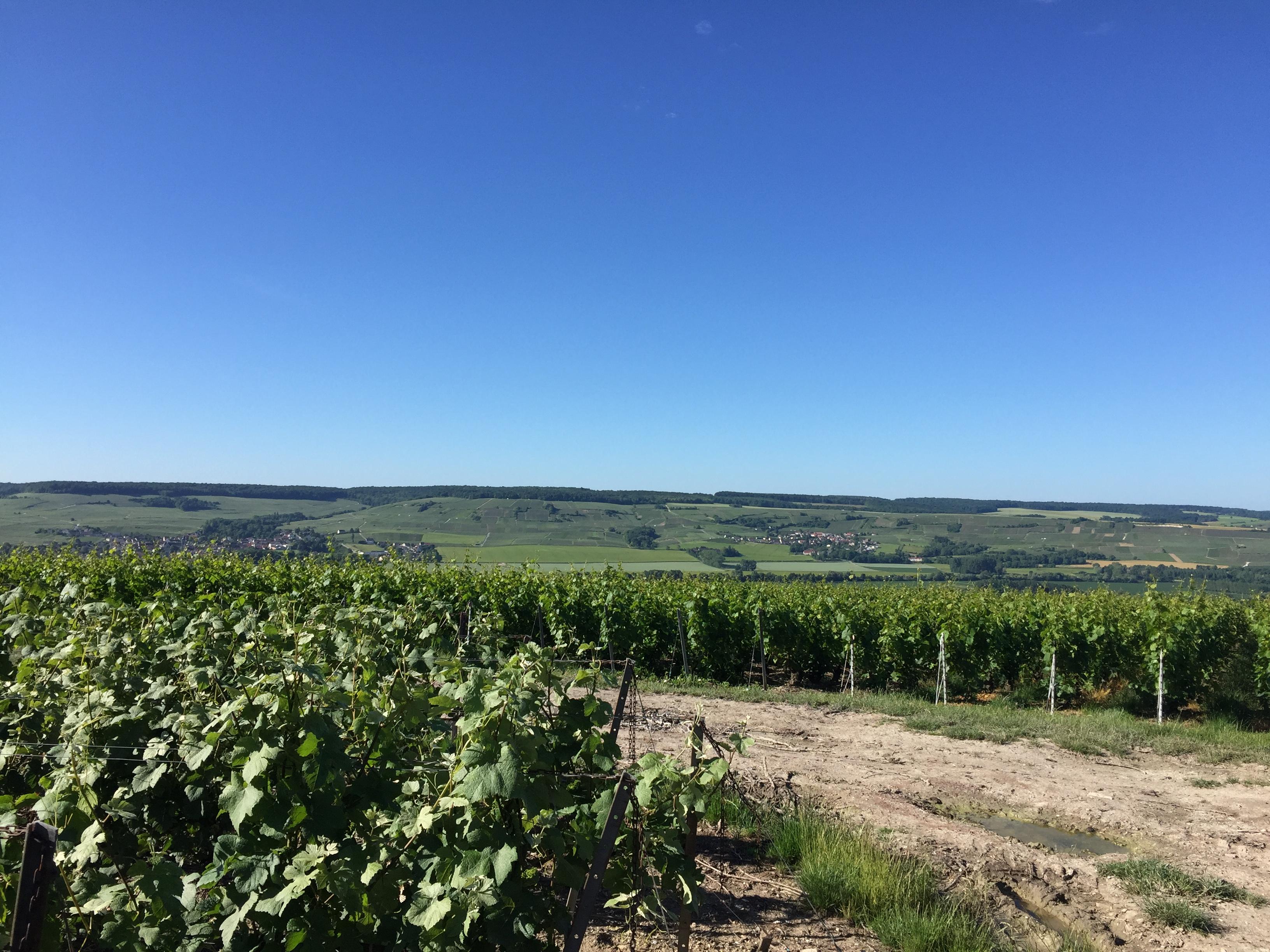 Vue sur Troissy/Bouquigny