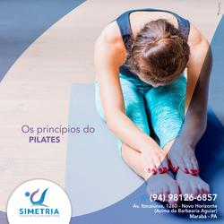 SIMETRIA_Posts_Stories_Princípios_pilate