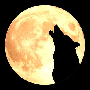 Logo Howling Wolf.jpg