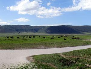 10D Tanzania & Kenya Spectacular Safari Adventure