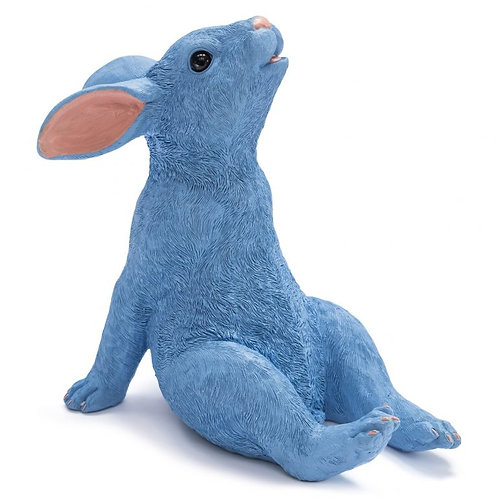 Peter Blue Rabbit