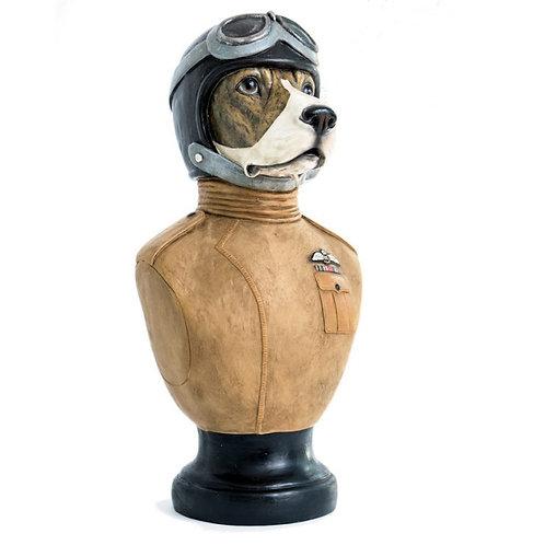 Pilot Beagle