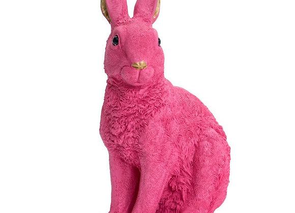 Bright Pink Rabbit