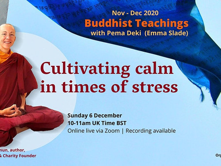 Cultivating Calmness in Times of Stress
