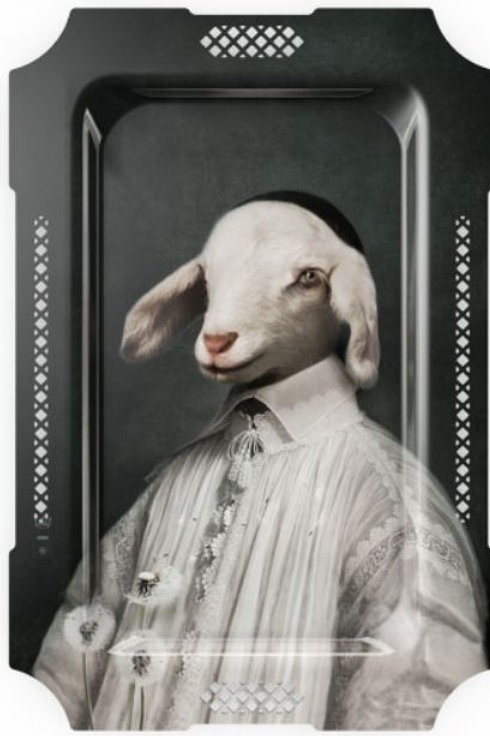 Innocent Pure White Lamb Choir Boy Tray/Wall Art