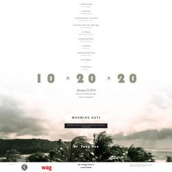 10x20x20 Poster