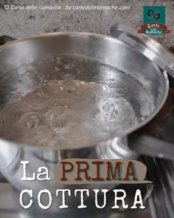 Lumache cottura base