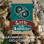 Corte delle Lumache Logo