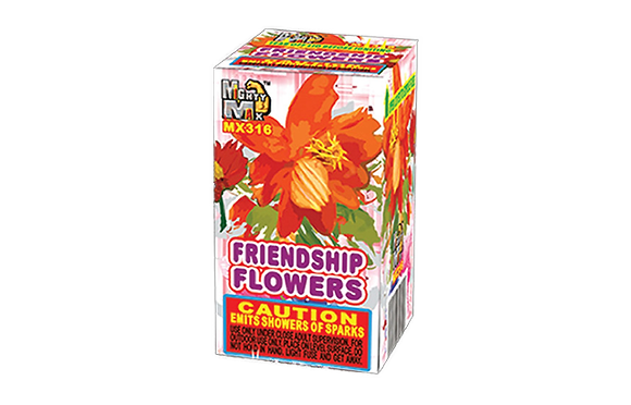 Friendship Flowers Large