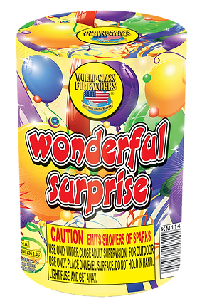Wonderful Surprise