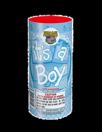 It's A Boy Fountain