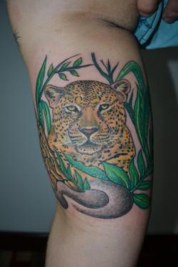 Leopard Tattoo