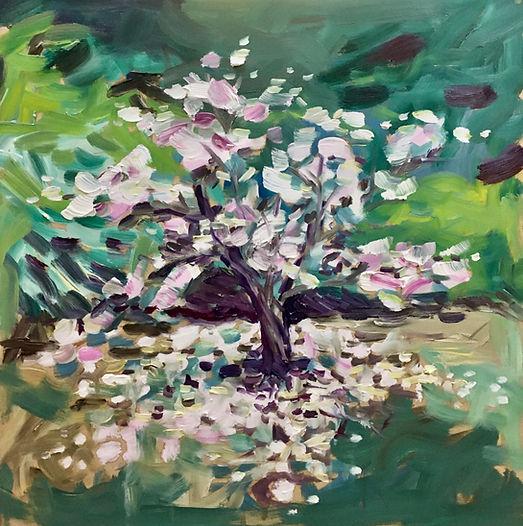 """Blossom Tree""  Botanical Gardens, Edinburgh, March 202 Oil on wood, 1m x 1m, £700"