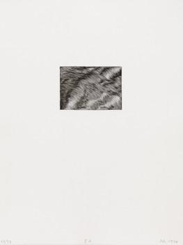 I GEKÄMMT 01 / (03)