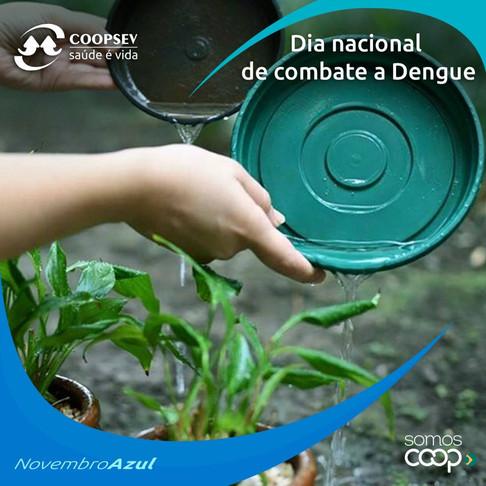 Dia Nacional de combate a Dengue
