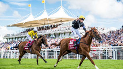 Glorious Goodwood