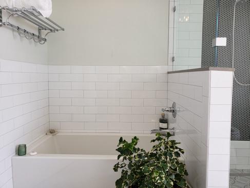 9d-completed-bathtub.jpg