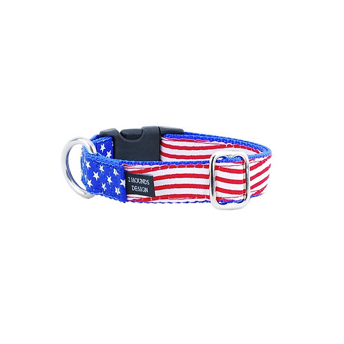 Stars and Stripes Essential Dog Collar