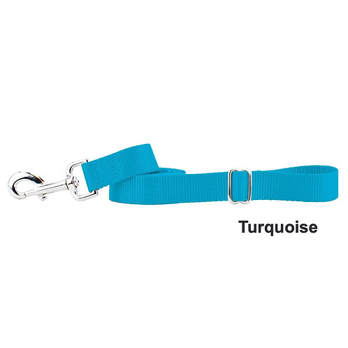 Nylon Dog Leash (Multiple Color Options)