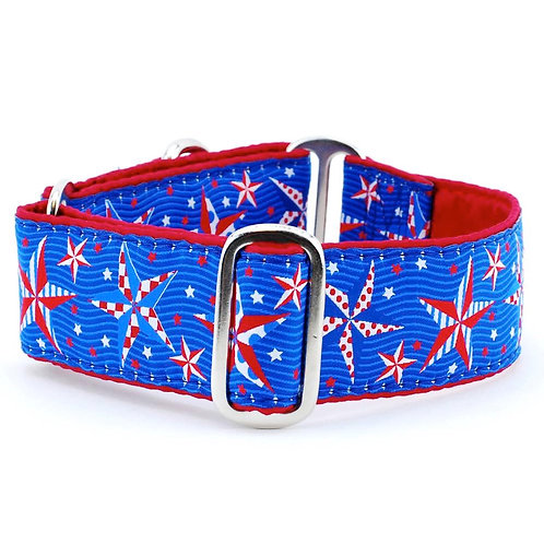 Eclectic Stars – Exclusive Dog Collar