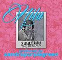 Zigilengi Remixes.jpg