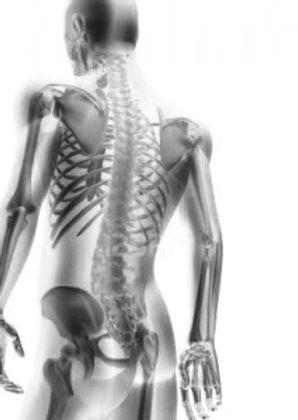Julien Dhennin ostéopathe ostéopathie Lambersart Mons en Baroeul mal de dos bébé femme enceinte sportif sénior adulte torticoli lumbago sciatique médecine douce