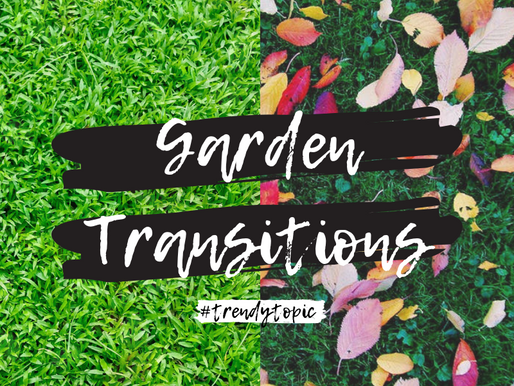 This week's #trendytopic! Garden Transitions