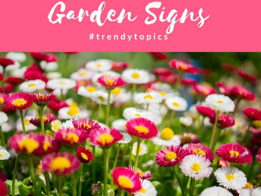 This week's #trendytopic! Garden Signs
