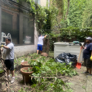 Bhutanese group cleaning the garden