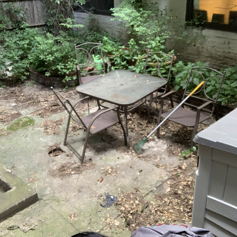 Garden Before Cleanup