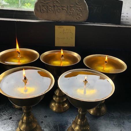 Lamp Offerings