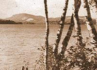Gibson Grove (historique)