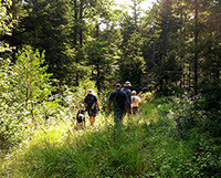 Hikers in the Noyes Woods