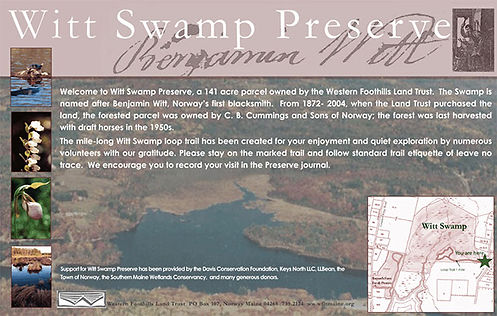 witt-swamp-kiosk-piece.jpg