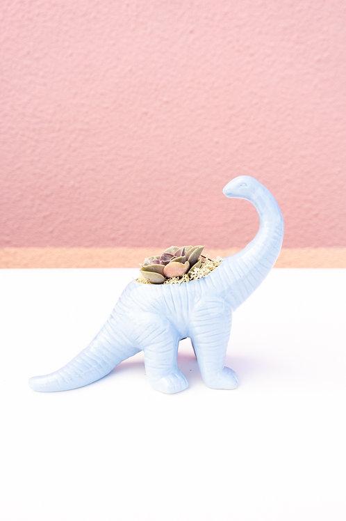 Big Blue Brontosaurus Dinosaur Arrangement