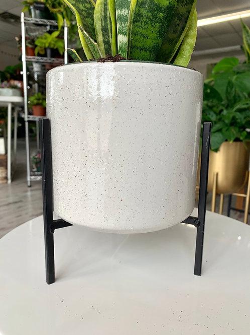"""Modern Pot+Metal Stand 6"""""""