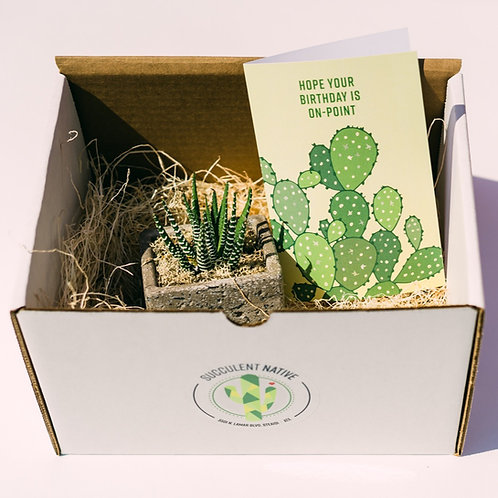 Ship a Cactus