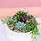 Thumbnail: Modern White Bowl Succulent Arrangement