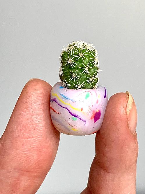 Custom Marbled Tiny Babies