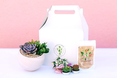 Deluxe Succy Love Gift Box