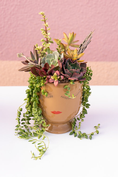 Lush Carmel Lady Face Succulent Arrangement
