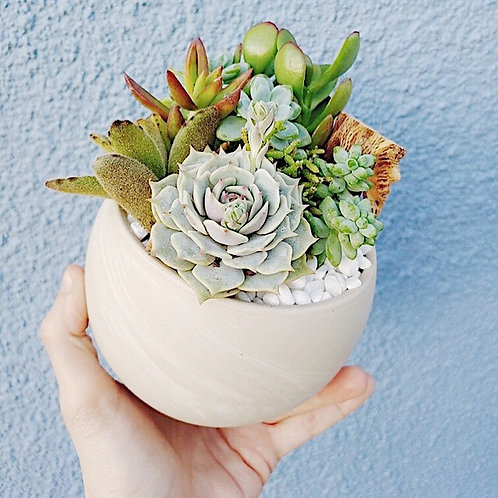 White Marbled Bowl Arrangement