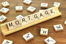 Willow Tree Financial Services - Mortgages, Investments, Pensions, Protection, Insurance, Wills, Trusts & Estate Planning in Polegate, near Eastbourne, East Sussex